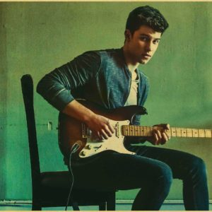 Shawn Mendes Poster #11