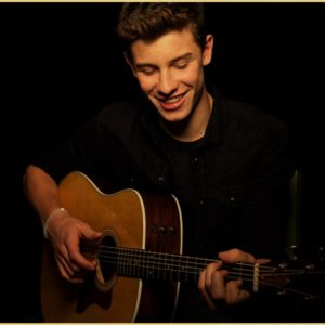 Shawn Mendes Poster #3